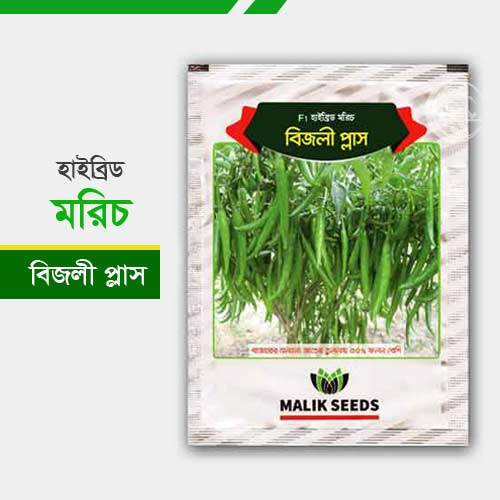হাইব্রিড মরিচ বিজলি প্লাস Morich-Bijli-Plus