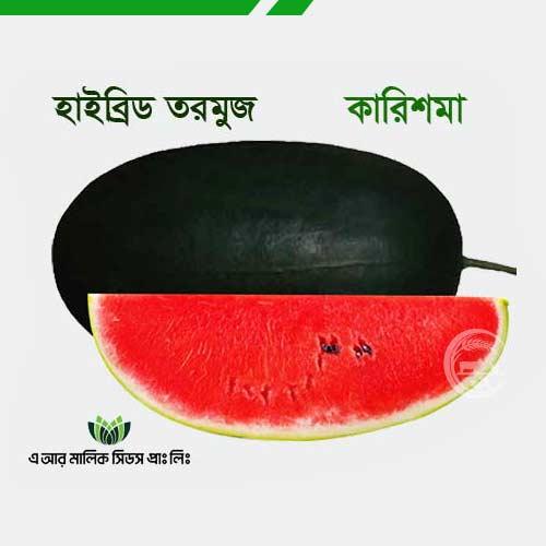 কালো আইসবক্স হাইব্রিড তরমুজ- কারিশমা বীজ Karishma Watermelon