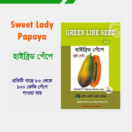 সুইট লেডি হাইব্রিড পেঁপে বীজ-Sweet Lady Papaya