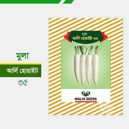 হাইব্রিড মূলা- আর্লি হোয়াইট ৩৫- 35 Radish Mula-Arli-White
