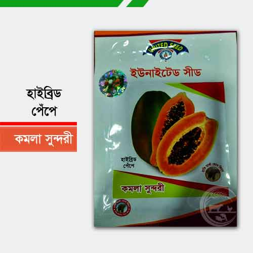 কমলা সুন্দরী হাইব্রিড পেঁপে Kamala Sundari Hybrid papaya