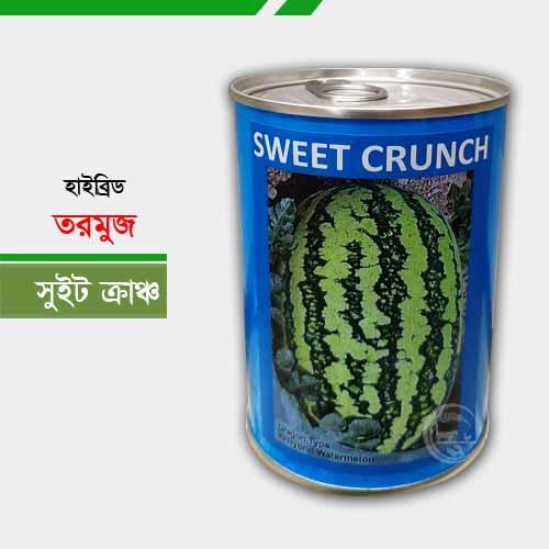 ড্রাগন বা ডোরাকাটা হাইব্রিড তরমুজ সুইট ক্রাঞ্চ Sweet Crunch
