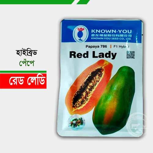 রেড লেডি হাইব্রিড পেঁপে Hybrid papaya Red Lady