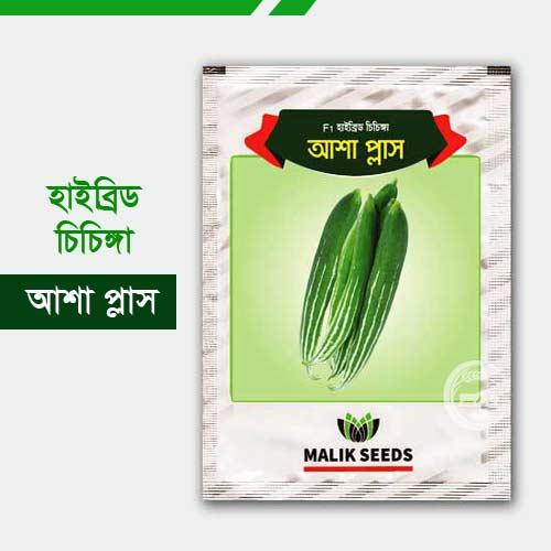 হাইব্রিড চিচিঙ্গা আশা প্লাস Asha Plus Snake Gourd