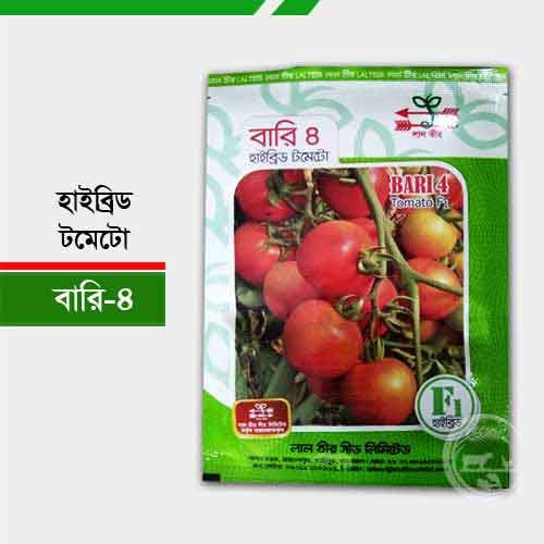 হাইব্রিড টমেটো বারি ৪ (গ্রীষ্মকালীন) Bari-4-tomato