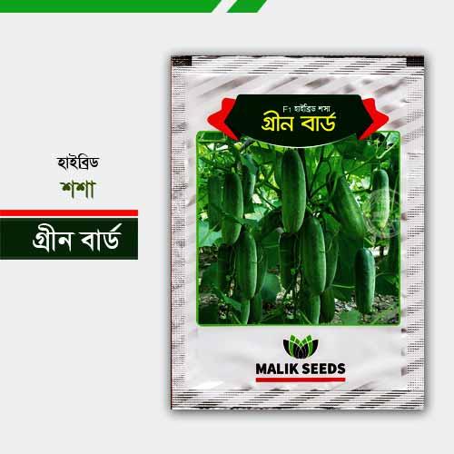 হাইব্রিড শশা গ্রীন বার্ড Green Bird Cucumber