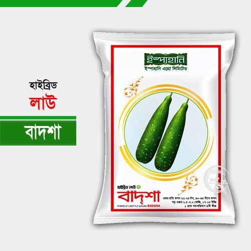 হাইব্রিড লাউ বাদশা Bottle Gourd Badsha
