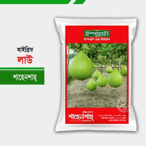 হাইব্রিড লাউ শাহেনশাহ্ Bottle Gourd Shahansha