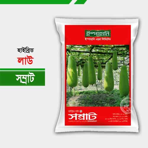 হাইব্রিড লাউ সম্রাট Bottle Gourd Samrat